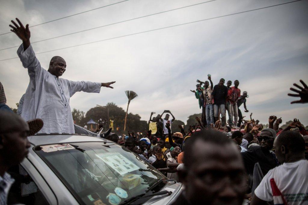Gambia Tyrant .jpg